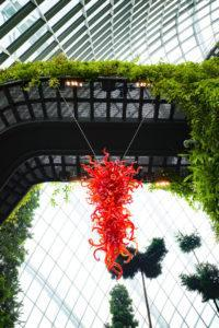 Chihuly Studio's 'Ruby Red Chandelier' at the Cloud Forest. Photo: Coconuts