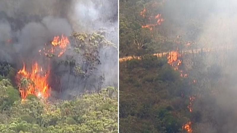 A number of boats have been used to rescue people stranded in the Royal National Park during a massive bushfire. Photo: 7 News