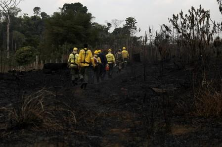 Firefighters walk at a burnt tract of Amazon jungle during an operation to combat fires in Amazon jungle in Porto Velho