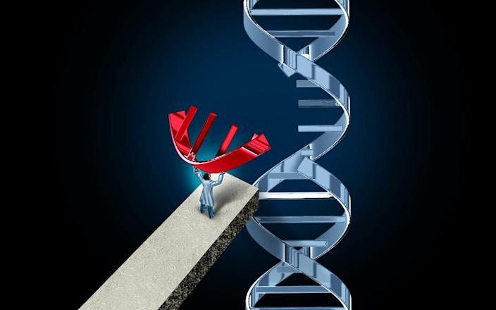 """<span class=""""caption"""">CRISPR enables editing DNA with unprecedented precision.</span> <span class=""""attribution""""><a class=""""link rapid-noclick-resp"""" href=""""https://www.gettyimages.com/detail/photo/genome-editing-royalty-free-image/1153361167"""" rel=""""nofollow noopener"""" target=""""_blank"""" data-ylk=""""slk:wildpixel/iStock via Getty Images"""">wildpixel/iStock via Getty Images</a></span>"""