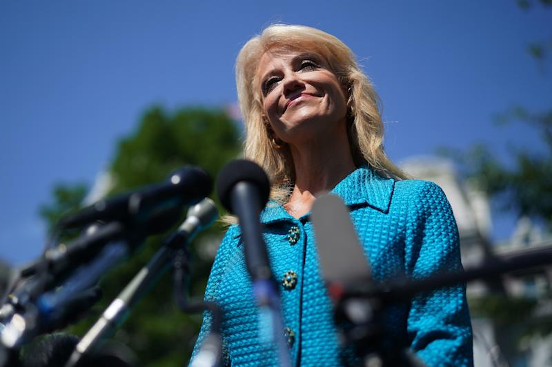 """""""What's Your Ethnicity?"""" Kellyanne Conway Asks a Reporter"""