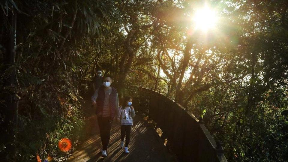 A family walk along a hiking trail in Hong Kong, as sunlight filters through the trees