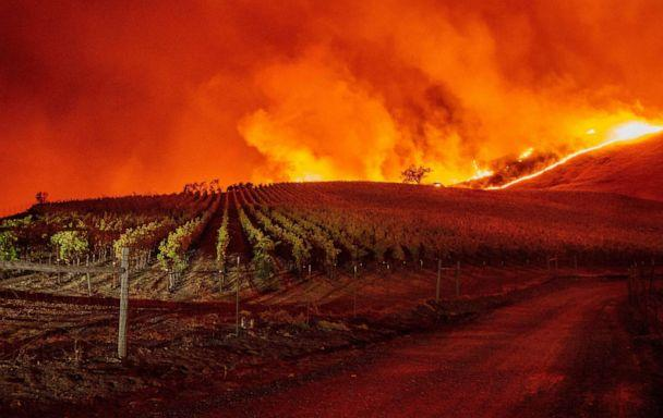 PHOTO: Flames approach rolling hills of grape vines during the Kincade fire near Geyserville, Calif., Oct. 24, 2019. (Josh Edelson/AFP via Getty Images)