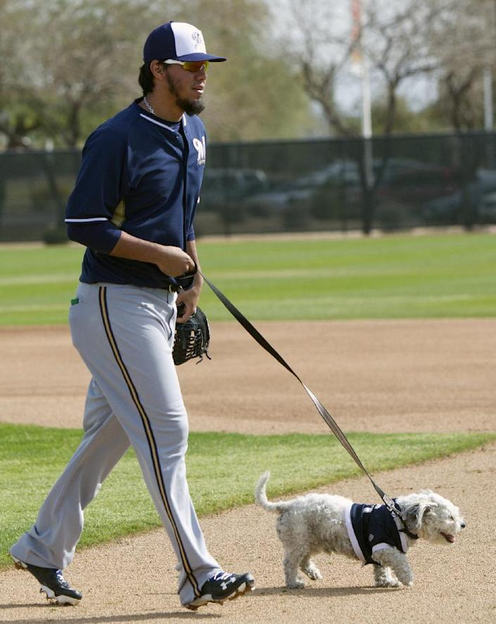 Brewers' Yovani Gallardo walks Hank, a stray dog that the Brewers recently found wandering their practice fields at Maryvale Baseball Park, during spring training on Friday, Feb. 21, 2014, in Phoenix. The team and staff have been taking care of Hank since he was found at the park on President's Day. Hank is named after Hank Aaron. (AP Photo/The Arizona Republic, Cheryl Evans) MARICOPA COUNTY OUT; MAGS OUT; NO SALES