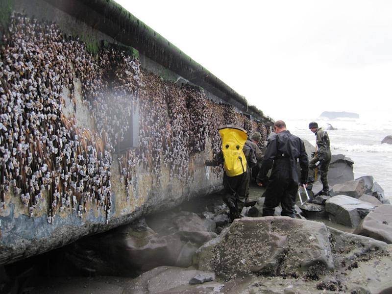 Members of the Washington tsunami debris experts team inspect a dock Friday Dec. 21, 2012 that apparently floated from Japan after last year's tsunami and just washed ashore on a Washington beach near Forks Tuesday. (AP Photo/National Park Service)