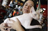 In this March 15, 2012 photo, a four-year-old hairless cream point Sphynx, named Moshe Moshi, is held by her owner Carol Meir of Takoma Park, Md., at The Big Bad Woof, a pet supplies store, in Washington. Meir is managing her cat's allergies with a venison and pork diet and daily medication. She figures it cost her about $750 for vets and tests. Medicine is $250 a year. (AP Photo/Charles Dharapak)