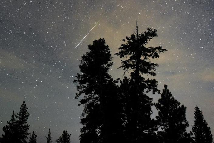 A Perseid meteor streaks across the sky above desert pine trees in the Spring Mountains National Recreation Area in Nevada, on August 13, 2015 (AFP Photo/Ethan Miller)
