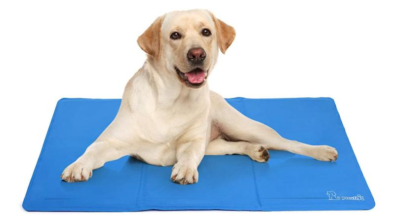 Pecute Dog Cooling Mat Large
