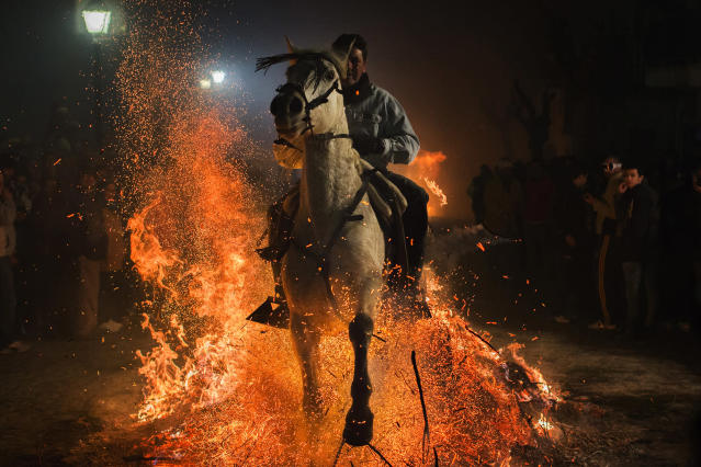 <p>A man rides a horse through a bonfire as part of a ritual in honor of St. Anthony the Abbot, the patron saint of domestic animals, in San Bartolomé de Pinares, about 62 miles west of Madrid, Jan. 16, 2015. (AP Photo/Andres Kudacki) </p>