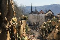 A view shows a burnt area following a wildfire in the village of Ait Sid Ali