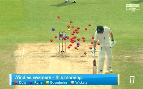 Windies beehive - Credit: Sky Sports Cricket