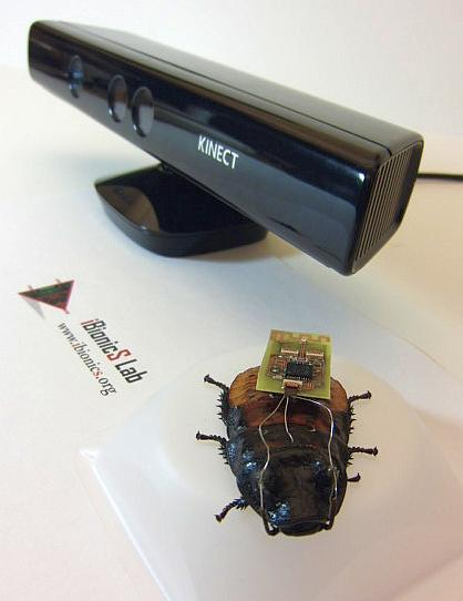 Video Game Tech Steers Cyborg Cockroach