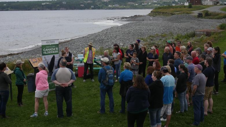 Annual rescue of pufflings — baby puffins — underway in Witless Bay