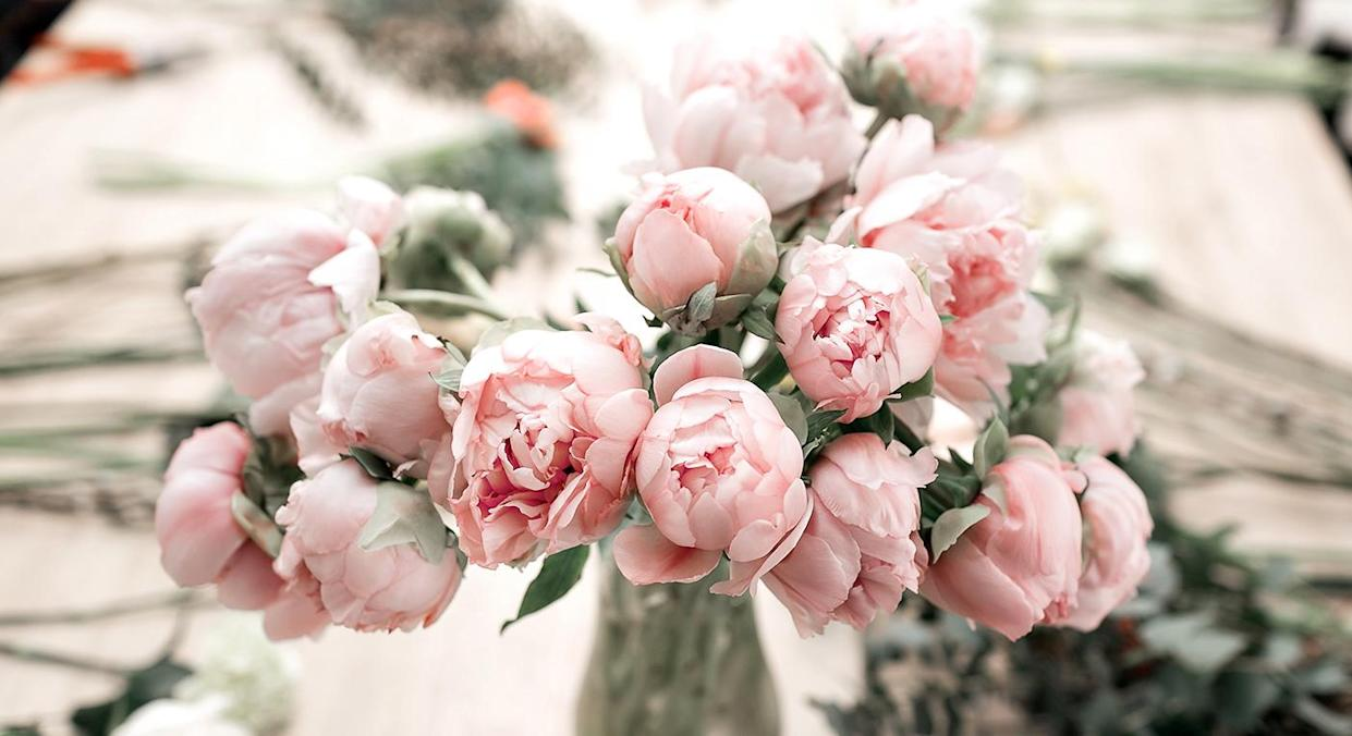 These are the best places to buy peonies online. (Getty Images)