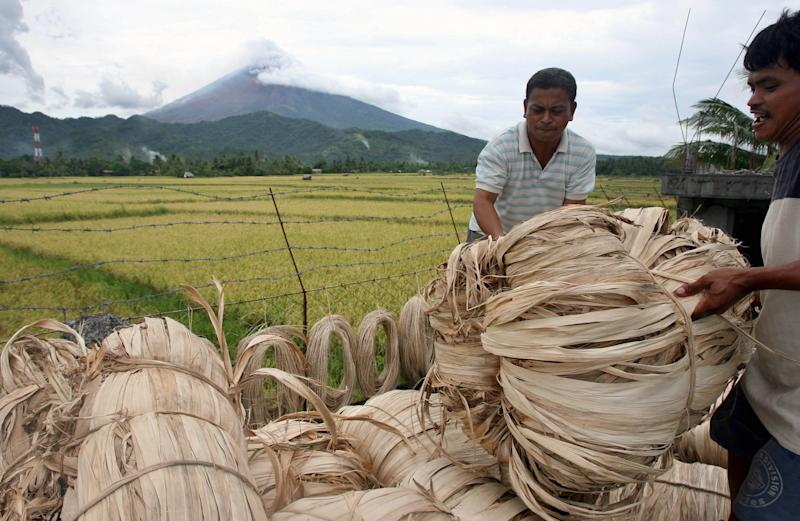 FILE PHOTO: Workers load abaca fiber in a truck as the Mayon volcano remains restive in the background near Legazpi City, south of Manila, August 21, 2006. REUTERS/Cheryl Ravelo (PHILIPPINES)