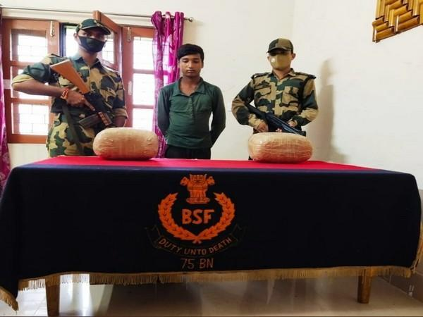 Arrested drug trafficker and seized cannabis (Photo/ANI)