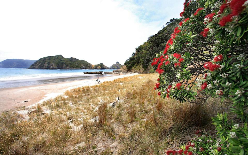 """<p>At 104 square miles, """"The Barrier"""" is the largest island off the Kiwi coast, but it's also the most untouched. Spend your days hiking through dense kauri woods or exploring jagged inlets. Then refuel over mussel fritters at <strong>Tipi & Bobs</strong> <em>(38 Puriri Bay Rd., Puriri Bay; 64-9/429-0550; dinner for two $45)</em>. The four modern rooms at the glass-walled <strong>Oruawharo Beach House</strong> <em>(5 Ringwood St., Torbay; 64-9/473-6031; <a href=""""http://www.ihu.co.nz/"""" rel=""""nofollow noopener"""" target=""""_blank"""" data-ylk=""""slk:ihu.co.nz"""" class=""""link rapid-noclick-resp"""">ihu.co.nz</a>; doubles from $450)</em> are designed by New Zealand architecture firm Fearon Hay and have spectacular views of Oruawharo Bay.</p><p><strong>T+L Tip:</strong> Indulge in a soak at <strong>Kaitoke Hot Springs</strong> <em>(<a href=""""http://greatbarrier.aucklandnz.com/"""" rel=""""nofollow noopener"""" target=""""_blank"""" data-ylk=""""slk:greatbarrier.aucklandnz.com"""" class=""""link rapid-noclick-resp"""">greatbarrier.aucklandnz.com</a>). -Erin Florio</em></p>"""