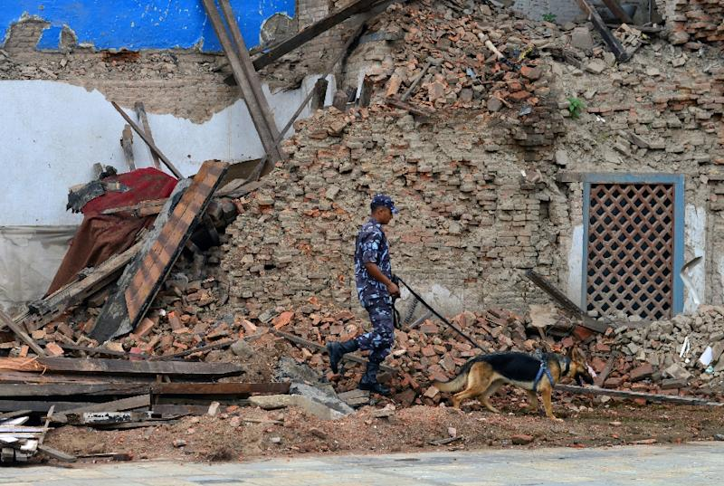 A Nepalese police officer walks with a sniffer dog in Durbar Square ahead of the International Conference on Nepal Reconstruction in Kathmandu on June 24, 2015 (AFP Photo/Prakash Mathema)