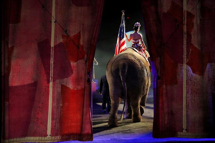 <p>One of Ringling Bros and Barnum & Bailey Circus' performing elephants enters the arena for it's final show in Wilkes-Barre, Pennsylvania, May 1, 2016. (REUTERS/Andrew Kelly) </p>