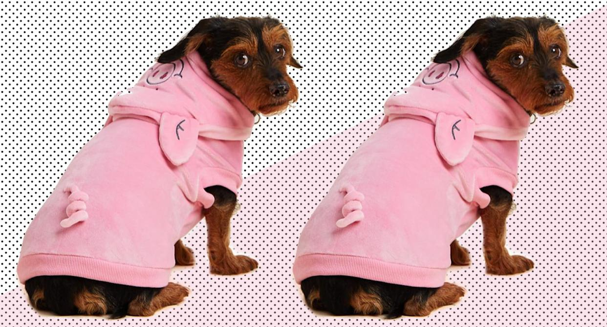 The nation's favourite pig is back with a new outfit just for dogs. (Marks & Spencer)