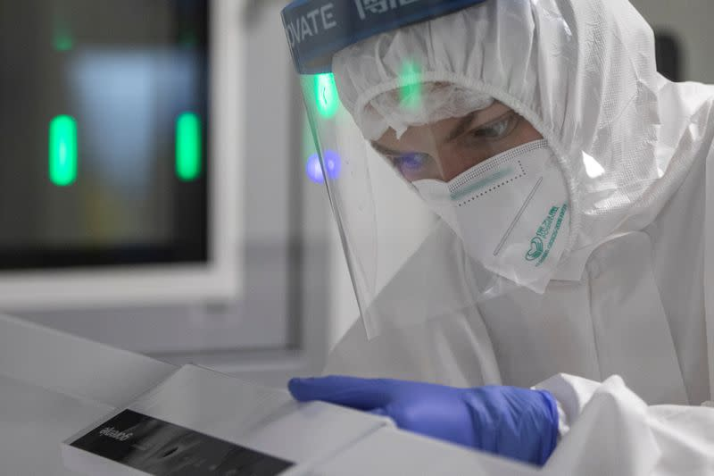 FILE PHOTO: A scientist works with samples taken for testing for the coronavirus disease (COVID-19) in Belgrade