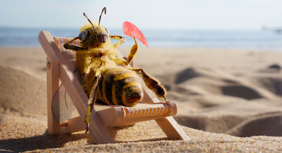 This bee has the coolest job ever. [Photo: SWNS]