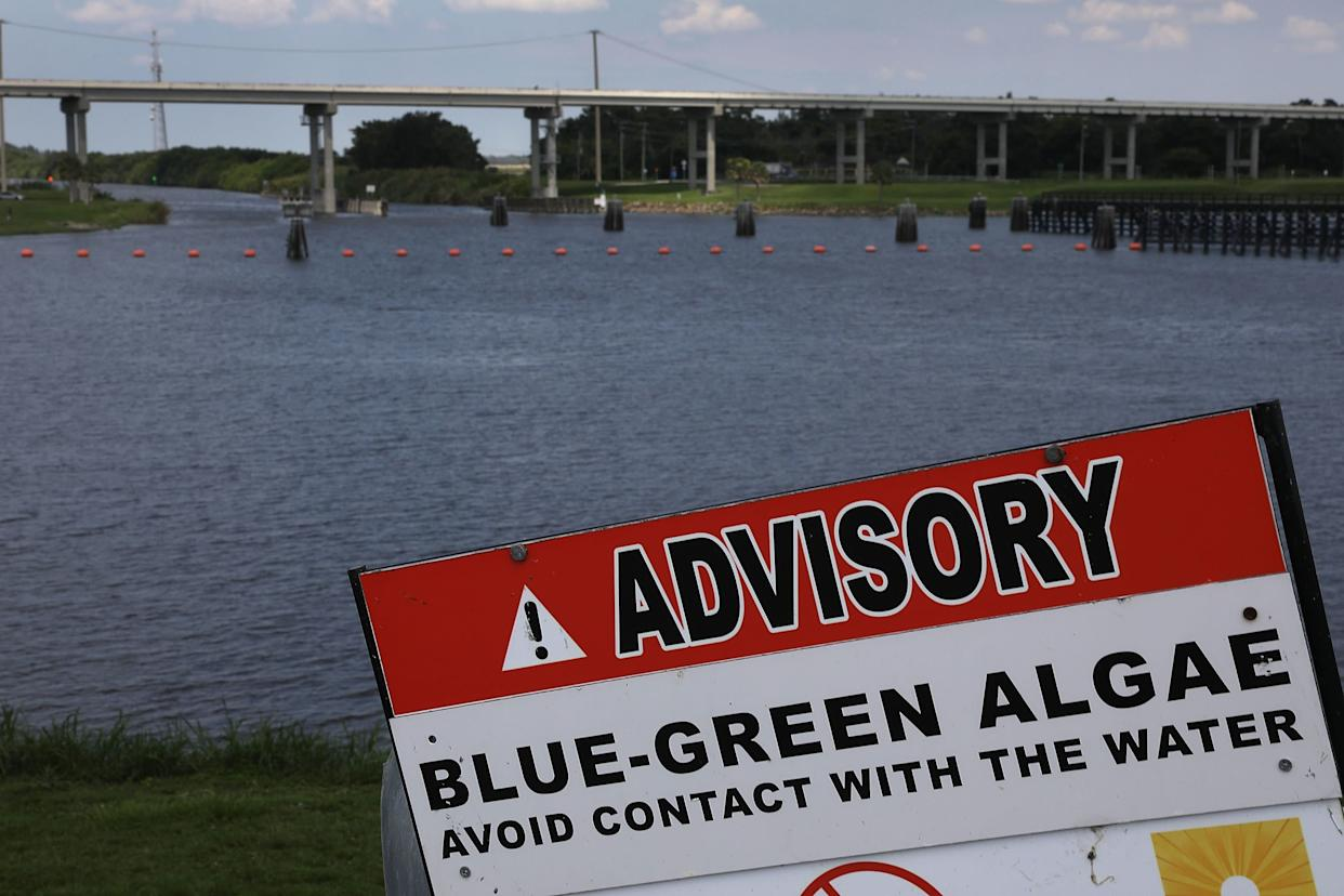 A sign warns of Blue-Green algae in the water near the Port Mayaca Lock and Dam on Lake Okeechobee on July 13. (Photo: Joe Raedle via Getty Images)
