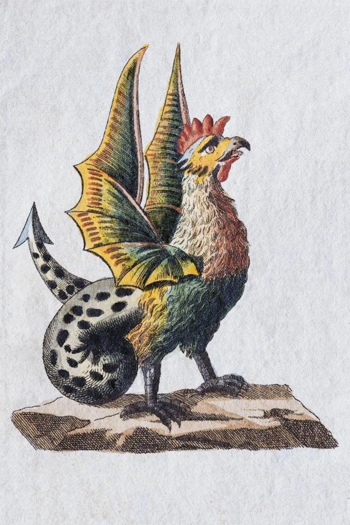 """<p><strong>Origin:</strong> <em>Unknown.</em></p><p>Some reports say the Basilisk originated in Italian lore while others say it was born from Greek mythology. According to lore, the Basilisk had the power to kill people with a single glance—similar to Medusa although the two are not interchangeable. The creature emerged from a rooster's egg after being incubated by a toad and had the power """"to wither landscapes with its breath,"""" according to the <a href=""""https://www.smithsonianmag.com/history/on-the-trail-of-the-warsaw-basilisk-5691840/"""" rel=""""nofollow noopener"""" target=""""_blank"""" data-ylk=""""slk:Smithsonian"""" class=""""link rapid-noclick-resp""""><em>Smithsonian</em></a>. </p><p>The Basilisk has been around for a long time, with the earliest written reports dating back to a mention in Pliny the Elder's Natural History in 79 A.D. The Basilisk was often referred to as the king of serpents and has been described in varying detail as being a mix of snake and rooster. The Basilisk is the very definition of the saying, """"if looks could kill."""" This is why we included the creature in our ranking—anything that can kill people with a single glance and its rancid breath is pretty badass. And terrifying. And gross.</p>"""