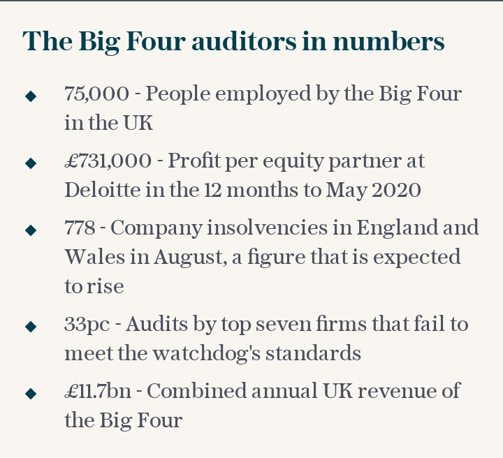 The Big Four auditors in numbers