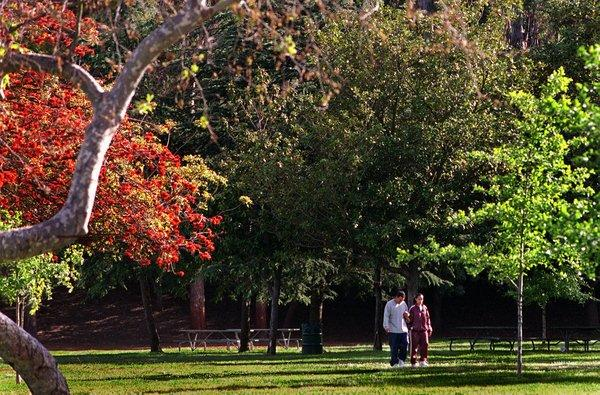 """Located off the 110 Freeway in Montecito Heights, Debs Park is one of the most underrated green spaces in the city. <span class=""""copyright"""">(Richard Hartog / Los Angeles Times)</span>"""