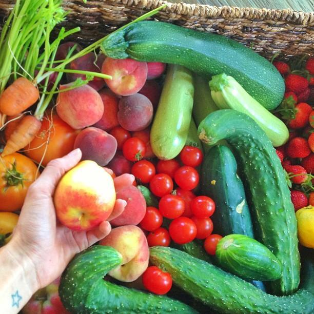 """<p>But only certain veggies make the cut for Brady. Since Campbell claims that nightshades are not anti-inflammatory, he wouldn't serve the quarterback tomatoes, peppers, mushrooms, or eggplants. </p><p>""""Tomatoes trickle in every now and then, but maybe just once a month,"""" Campbell says. """"I'm very cautious about tomatoes. They cause inflammation."""" </p><p>The chef is dedicated to getting the freshest produce possible, sometimes shopping twice a day for groceries.</p><p><a rel=""""nofollow noopener"""" href=""""https://instagram.com/p/bJIteRntFl"""" target=""""_blank"""" data-ylk=""""slk:See the original post on Instagram"""" class=""""link rapid-noclick-resp"""">See the original post on Instagram</a></p>"""