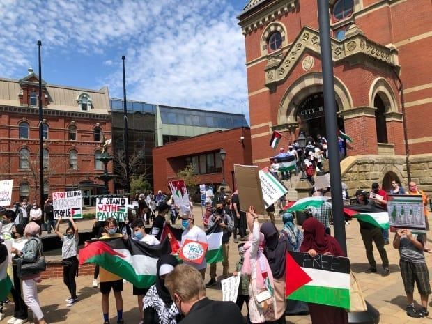 A large crowd of pro-Palestinian supporters gathered in downtown Fredericton Sunday afternoon. (Gary Moore/CBC - image credit)