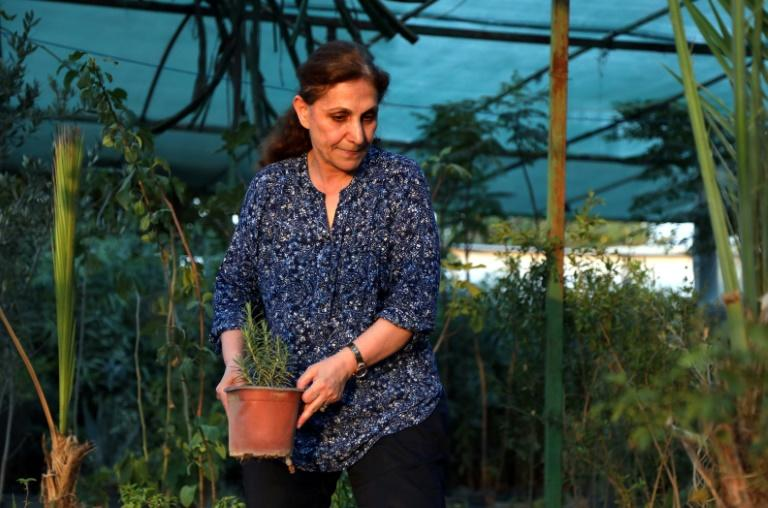 Diman Fatah, a 59-year-old who owns Arbil's first female-run plant nursery, says women are afraid to innovate because of what people might say (AFP Photo/SAFIN HAMED)