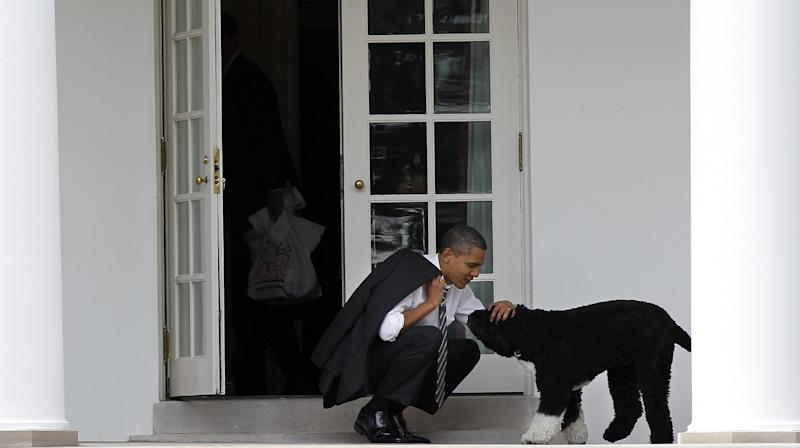 FILE - In this March 15, 2012, file photo, President Barack Obama pets the family dog Bo, a Portuguese water dog, outside the Oval Office of the White House in Washington. So let's get all the puns out of the way, shall we? It's the issue with legs _ four of them. The doggone thing won't go away. Has the presidential race just gone to the dogs? Or are we simply in those dog days between the primary season and the start of the general election? Whatever it is, the political Mommy Wars seem to have given way, at least temporarily, to the Doggy Wars, with an effort by supporters of both Mitt Romney and Obama to gain points with the Doggy Vote. That's dog owners, not the dogs themselves _ at least for now. (AP Photo/Pablo Martinez Monsivais, File)