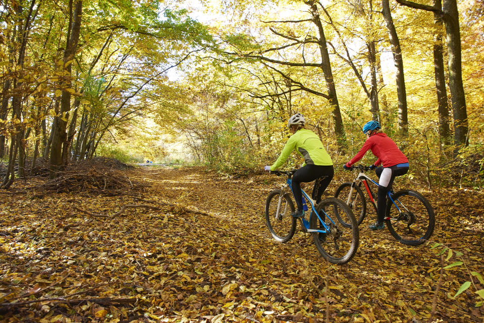 Full length of two female cyclist enjoy mountain biking together on the forest.