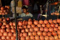 Pomegranate is one of the most important crops in southern Afghanistan (AFP/Javed TANVEER)