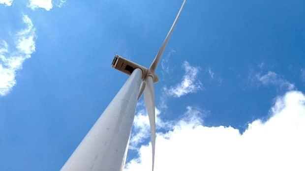 Nova Scotia says it will seek proposals to generate 10 per cent of its energy needs from renewable sources. Wind is now the cheapest source of electrical energy in Canada, the province stated in a media release Saturday. (Kyle Bakx/CBC - image credit)