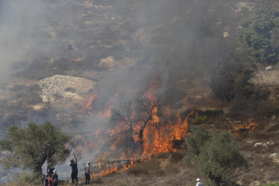 Palestinian farmers fight fire in olive groves, that was caused by Israeli police teargas canisters, used to disperse Palestinians trying to reach their groves, in the West Bank village of Burqa, East of Ramallah, Friday, Oct. 16, 2020. Palestinians clashed with Israeli border police in the West Bank on Friday during their attempt to reach and harvest their olive groves near a Jewish settlers outpost. (AP Photo/Nasser Nasser)