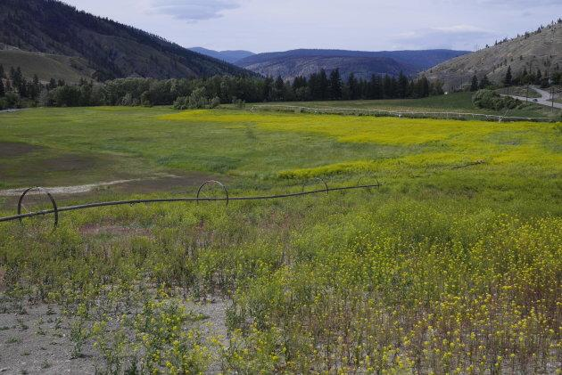 Much of the High Bar First Nation's traditional territory is now owned by ranchers. This ranch was photographed just outside Clinton, B.C., along Highway 97.