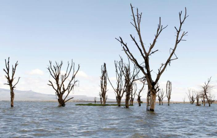 Swollen lake in Kenya's Rift Valley drives villagers from their homes in Naivasha