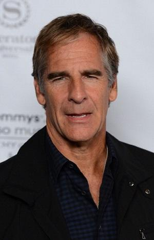 Scott Bakula Cast in HBO's Gay-Themed Series 'Looking'