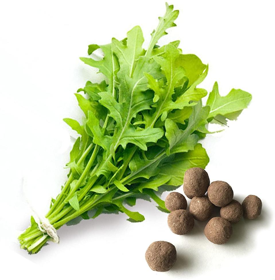 "<p>Grow fresh arugula for all your salads with these <a href=""https://www.popsugar.com/buy/Arugula-Seed-Balls-571568?p_name=Arugula%20Seed%20Balls&retailer=amazon.com&pid=571568&price=13&evar1=casa%3Aus&evar9=46114279&evar98=https%3A%2F%2Fwww.popsugar.com%2Fhome%2Fphoto-gallery%2F46114279%2Fimage%2F47449691%2FArugula-Seed-Balls&prop13=api&pdata=1"" class=""link rapid-noclick-resp"" rel=""nofollow noopener"" target=""_blank"" data-ylk=""slk:Arugula Seed Balls"">Arugula Seed Balls </a> ($13).</p>"