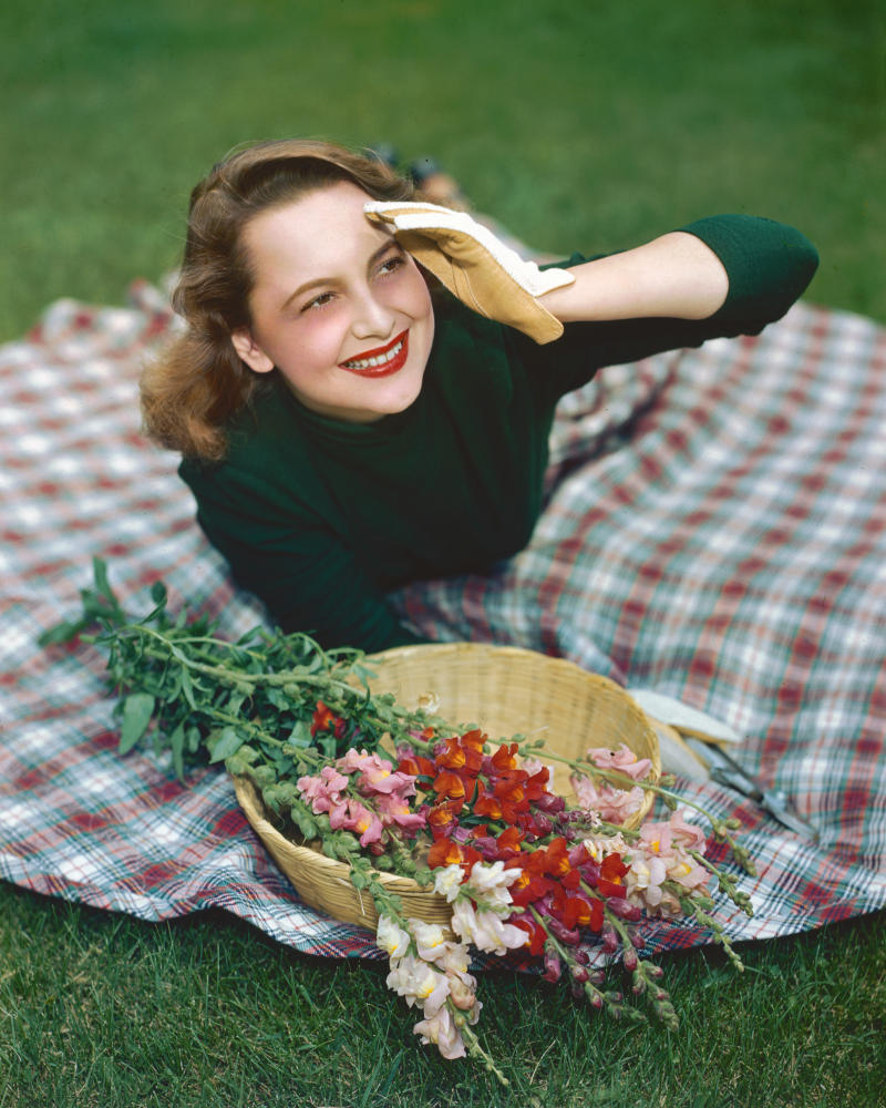 Olivia de Havilland, British actress, wearing a green jumper and gardening gloves she lays on a tartan rug with a basket of snapdragons, circa 1945. (Photo by Silver Screen Collection/Getty Images)