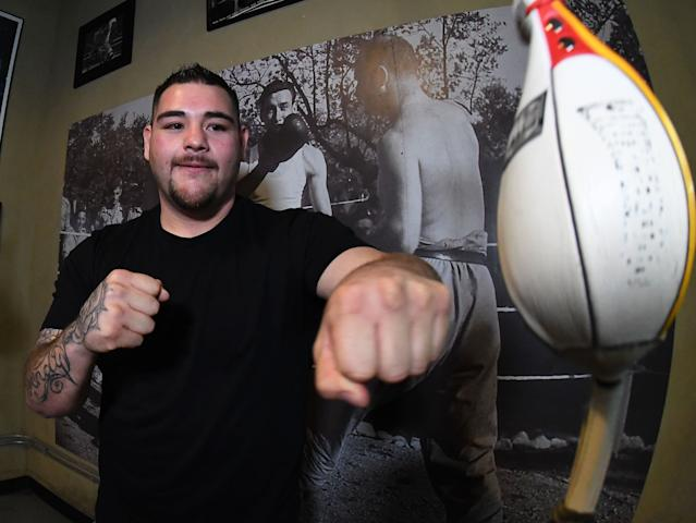 Andy Ruiz, Jr. has only suffered one defeat in his career (Photo by Jayne Kamin-Oncea/Getty Images)