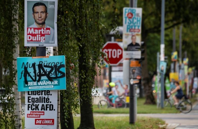 The far right has done well in elections in Dresden (AFP Photo/John MACDOUGALL)