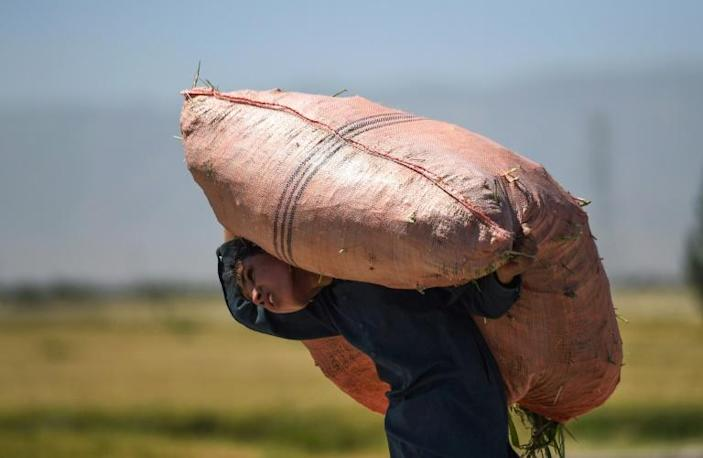 UNICEF and ILO warn that unless urgent action is taken to help ballooning numbers of families plunging into poverty, nearly 50 million more kids could be forced into child labour over the next two years