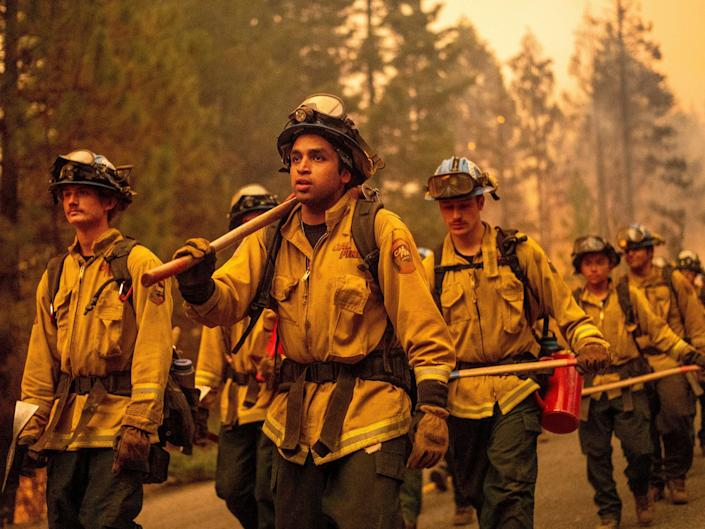 Multiple firefighters walk through the forest.