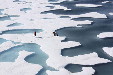 FILE PHOTO:    File picture of the crew of the U.S. Coast Guard Cutter Healy retrieves supplies dropped by parachute in the Arctic Ocean
