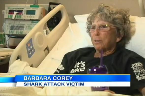 Surfing instructor, 63, attacked by shark says she's 'not giving up'