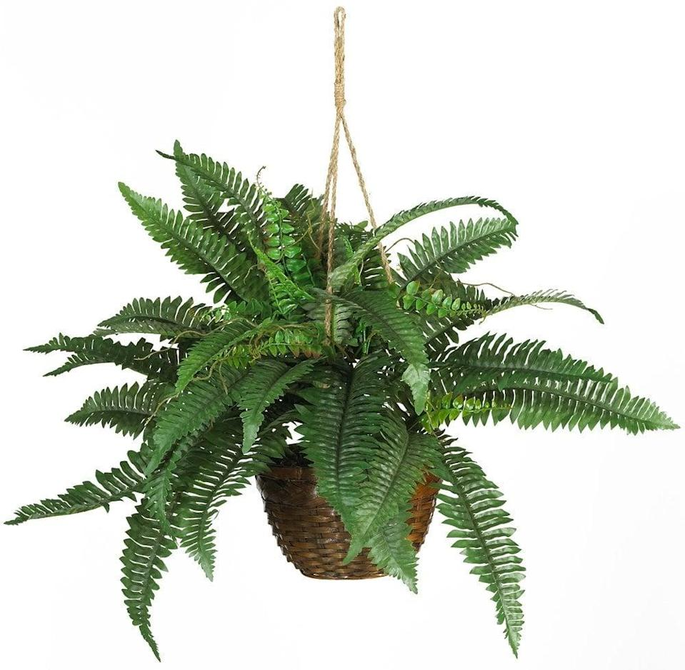 <p>Your guests will be aching to know where you got the <span>Nearly Natural Boston Fern Silk Hanging Basket</span> ($35, originally $40) and how you've managed to keep it looking so good.</p>